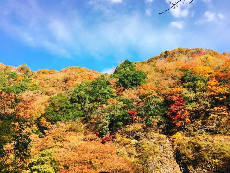 袋田の滝(紅葉がきれいな屏風岩)
