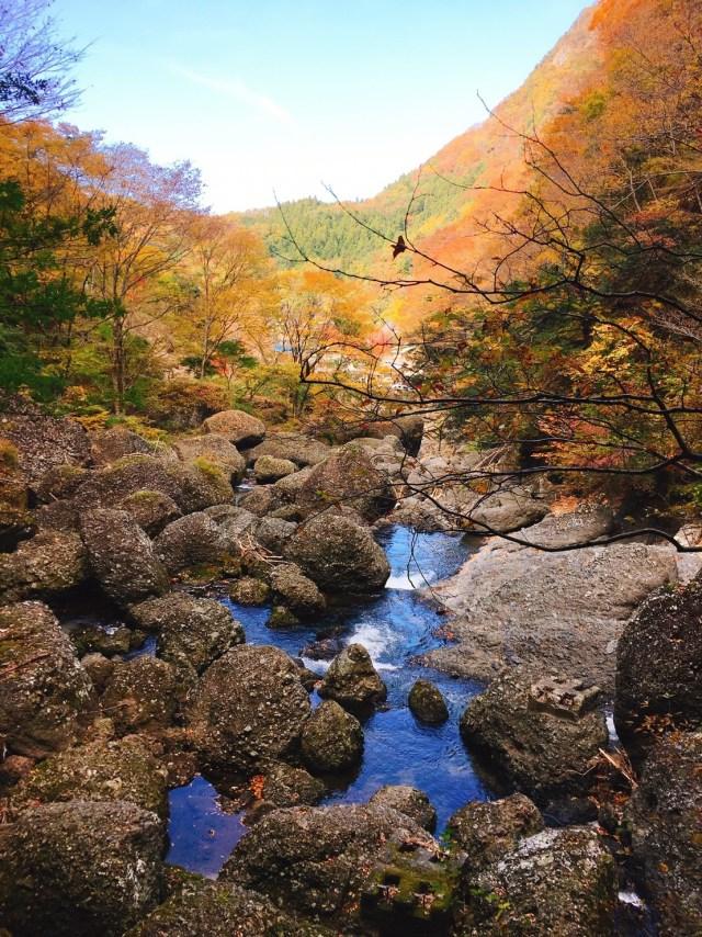 袋田の滝(紅葉がちょうど見頃)