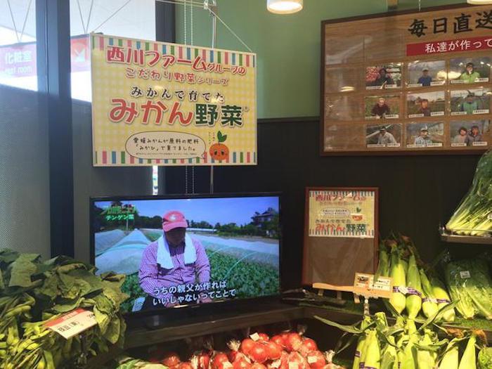 引用先:Makuake(みかんで日本のお米を美味しく!驚きの「みかん米」の公開に立ち会えるプロジェクト)