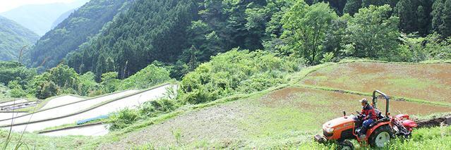 引用先:Makuake(神々の里高千穂で棚田オーナー募集。限界集落でつながる農業を実現したい)