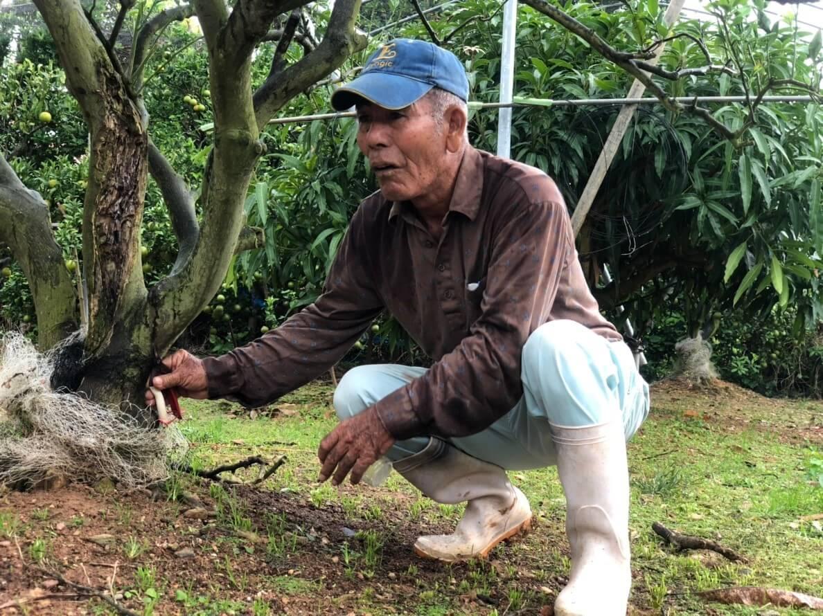 よく畑に通っているという服部さんでも初めて聞くような話を参加者にしてくれた、農家の上里さん