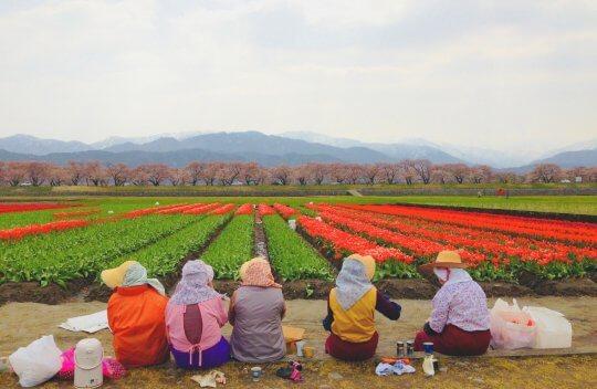 これからも富山県朝日町の応援をよろしくお願いいたします!