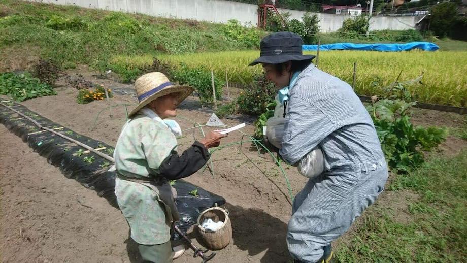 『つくえラボ』では、下水道資源を有効利用した堆肥を使い、「じゅんかん育ち」の野菜と米作りにチャレンジ。畑作りでは、農家歴70年のベテランから直々ご指導をもらうことも。